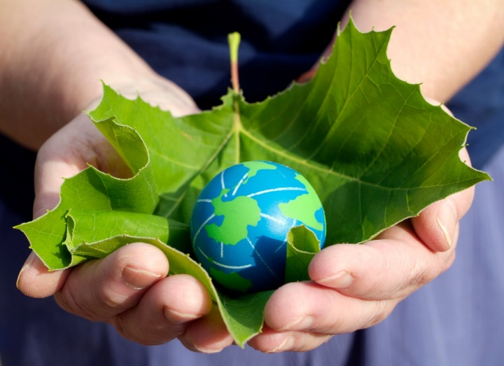 год экологии картинки фото чтят свою территорию