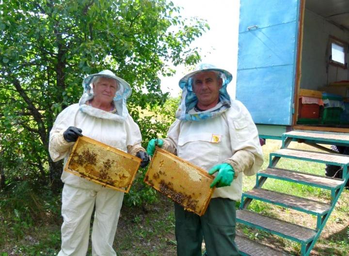 Пчёл держать – не в холодке лежать