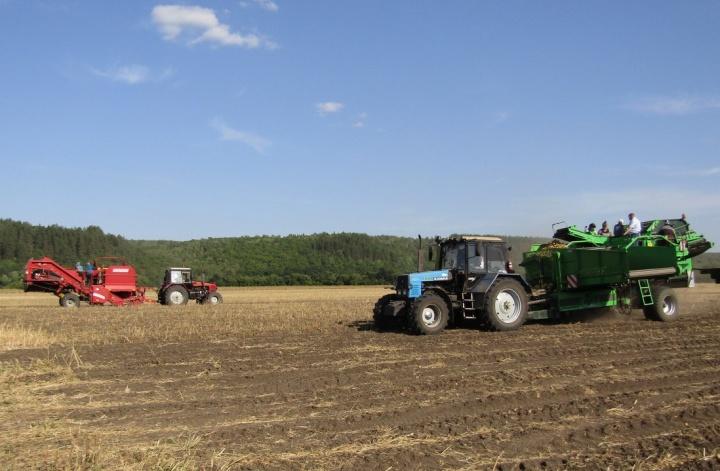 Лопатинские аграрии приступили к уборке картофеля