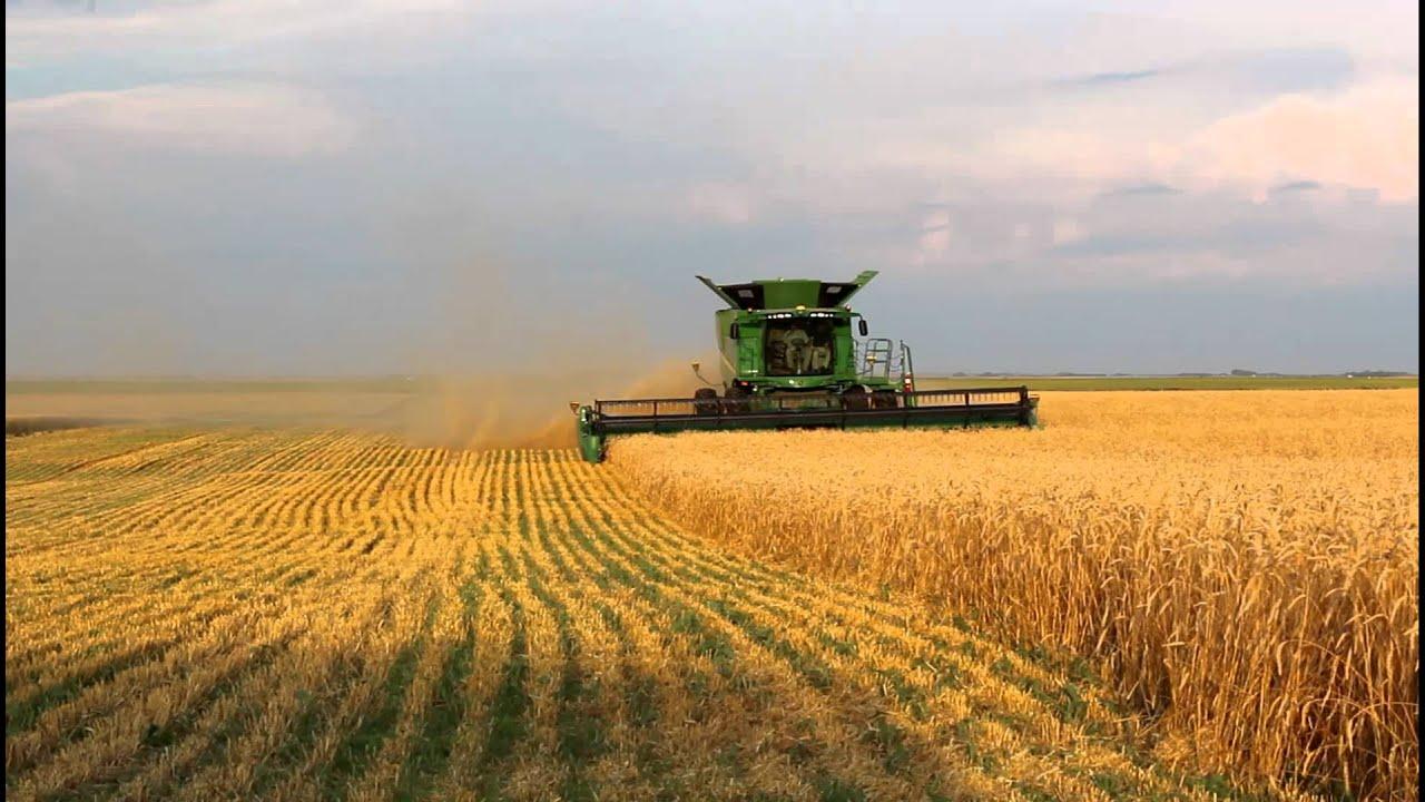 картинки поле комбайн урожай подойдет