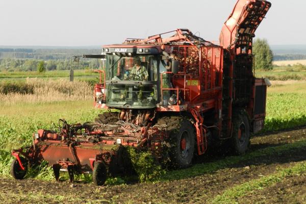 На20сентября собрано 117 млн тонн зерна— Минсельхоз