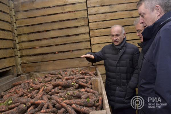 Пензенцы вБрянске изучают опыт картофелеводства исоздания логистических центров