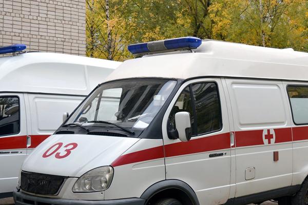 ВДТП вНижнеломовском районе Пензенской области умер человек