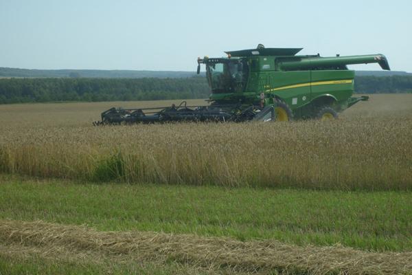 Орловские аграрии намолотили 2,8 млн тонн зерна